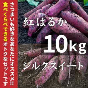 紅はるか & シルクスイート 10kg (土付き) さつまいもセット (北海道・沖縄・離島はお届け不可)|wa-zeka