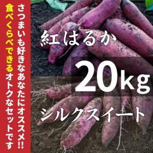 紅はるか & シルクスイート 20kg (土付き) さつまいもセット (北海道・沖縄・離島はお届け不可)|wa-zeka