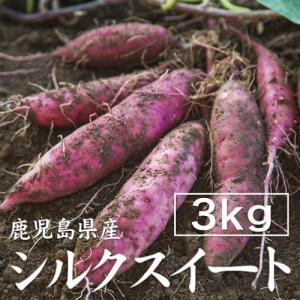 【予約】シルクスイート 3kg 生芋・大小混在 送料無料 シルクスイート さつまいも 薩摩芋 サツマイモ 蜜芋 紅はるか 安納芋|wa-zeka