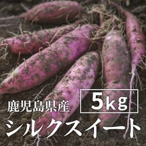 【予約】シルクスイート 5kg 生芋・大小混在 送料無料 シルクスイート さつまいも 薩摩芋 サツマイモ 蜜芋 紅はるか 安納芋|wa-zeka