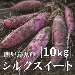 【予約】シルクスイート 10kg 生芋・大小混在(送料無料)シルクスイート さつまいも 薩摩芋 サツマイモ 蜜芋 紅はるか 安納芋|wa-zeka