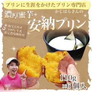 濃厚蜜芋安納プリン(100g×6個入)本場種子島産安納芋使用 手づくり 濃厚プリン|wa-zeka