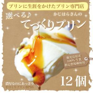 選べるてづくりプリン(12個入)手づくりプリン 豊富な9種類から選べます 地元鹿児島産の牛乳と卵を使用 贈り物やギフトにも最適|wa-zeka