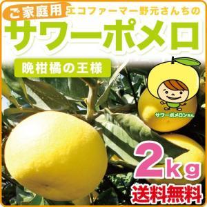 野元さんちのサワーポメロ 2kg【送料無料】ご家庭用訳あり|wa-zeka