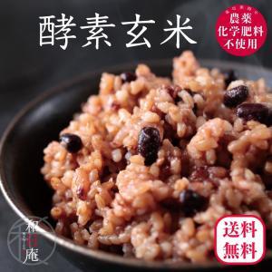 玄米 パック 酵素玄米 寝かせ 冷凍おむすび 90g 10個セット 無農薬 送料無料