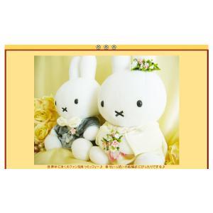 ぬいぐるみ電報 結婚式 バルーンラッピング:ミッフィー ウエディングドール(洋装) wac-up 10