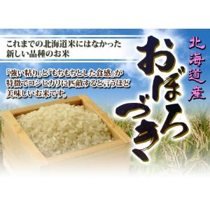 米 28年度 北海道産 ちりょく米 おぼろづき 2合×5個 お取り寄せ お土産 ギフト お中元 御中元 2018 プレゼント