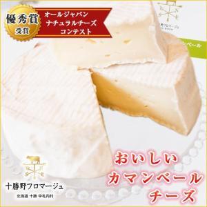 チーズ おいしいカマンベール 250g 北海道 十勝野フロマージュ お取り寄せ お土産 ギフト プレ...
