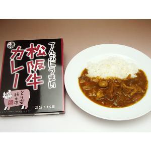 てんぷにうまい松阪牛カレー 2個セット 三重県 とり安精肉店 ネコポス便 お取り寄せ お土産 ギフト プレゼント 特産品 名物商品 ホワイトデー おすすめ|wagamachi-tokusan