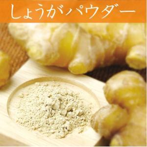 しょうがファインパウダー 無添加 山口県 野菜パウダー ネコポス便 お取り寄せ お土産 ギフト プレゼント 特産品 名物商品 父の日 wagamachi-tokusan