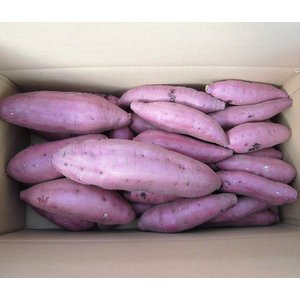 西山ファミリー農園 酵素シルクスイート 4kg  鹿児島県産 シルクスイート さつまいも お取り寄せ...