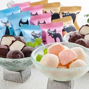 アイス お中元 ギフト アイスクリーム イーペルの猫祭り プチチョコアイス A-EP スイーツ 洋菓子 一口 お取り寄せ お土産 プレゼント 特産品 名物商品 御中元|wagamachi-tokusan