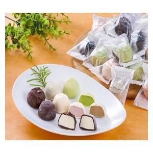 アイスクリーム ヒカリ乳業 チョコアイスボール 約13g×30粒入 個包装 ご自宅用 日付指定不可 特産品 名物商品 父の日|wagamachi-tokusan