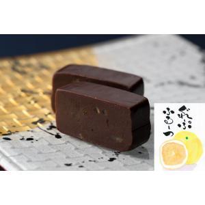 お中元 に ワイン に合う 美味しい チョコレート ようかん  月風 グレープフルーツ 「風りゅう ようかん 月風」|wagasi-denpudo