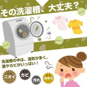 衣類と洗濯槽のW除菌Ag+ 3個入 洗濯槽 除菌剤 銀イオン 消臭 wagonsale-kanahashi 03