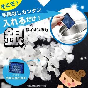 衣類と洗濯槽のW除菌Ag+ 3個入 洗濯槽 除菌剤 銀イオン 消臭 wagonsale-kanahashi 04