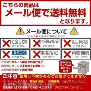 衣類と洗濯槽のW除菌Ag+ 3個入 洗濯槽 除菌剤 銀イオン 消臭 wagonsale-kanahashi 07