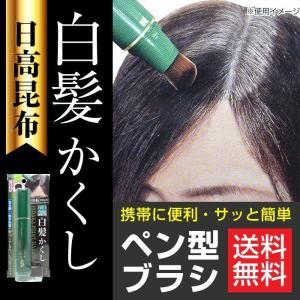日高昆布 白髪かくし ブラック 20g 部分白髪隠し 日本製 筆 ブラシタイプ メンズ レディース メール便 送料無料 ネコポス wagonsale-kanahashi