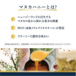 マヌカヘルス マヌカハニー MGO30+ ブレンド 250g 正規品 ニュージーランド産 蜂蜜 はちみつ 送料無料|wagonsale-kanahashi|02