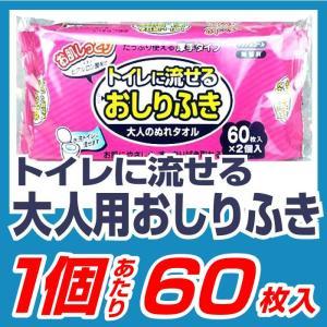 おしりふき 大人用 介護用 60枚入【ご...