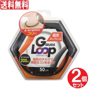 磁気ネックレス ガウスループ 50cm 2個セット 200mT おしゃれ 首こり 肩こり コリ  磁気 スポーツネックレス 日本製 送料無料|わごんせる