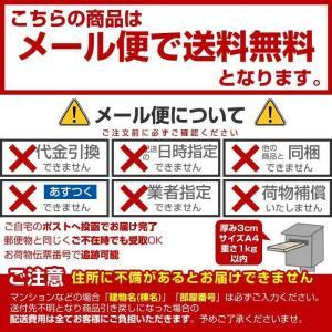 ダニィーくんバイバイ 詰替用 袋入 400ml|wagonsale|02