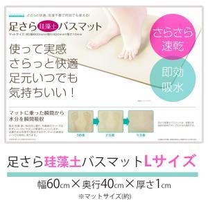 珪藻土バスマット Lサイズ 60cm×40cm 天然素材 素...