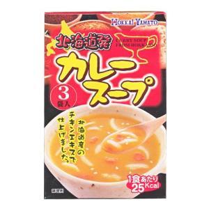 スープ スープカレー 北海道発 カレースープ 3袋入
