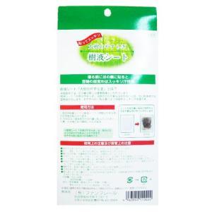 樹液シート 30枚組+6枚組  お徳用増量 足裏シート/フットケア 日本製|wagonsale|02