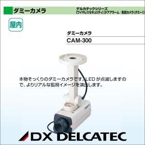 DXアンテナ デルカテックシリーズ[ワイヤレスセキュリティ][ドアアラーム/防犯カメラ(ダミー)] ダミーカメラ CAM-300|waiwai-d