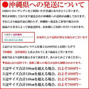 DXアンテナ 共同受信用BS・110度CSアンテナ 120形BS・CSアンテナ用固定マウント金具 DSA-342 受注生産品|waiwai-d|03