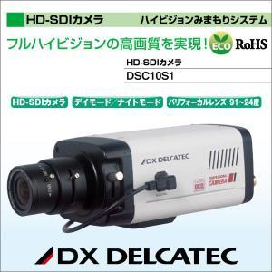 DXアンテナ デルカテック ハイビジョンみまもりシステム HD-SDIカメラ DSC10S1|waiwai-d