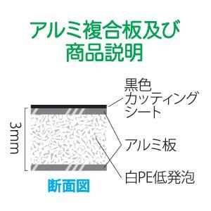 犬のフン禁止 W210mm×H95〜97mm 文字カッティングシート waka-shop 02