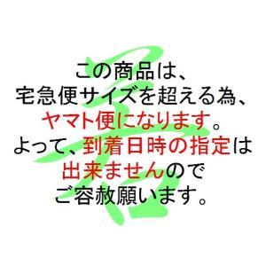 ★東邦ガス仕様 ファンヒーター RC-58FAF-P 国内送料無料 東京ガス・大阪ガス等大手都市ガス事業者供給地域内使用できます!