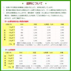 お中元 ギフト 日本酒 八海山 特別純米原酒 300ml×3本|wakamatsuya|04