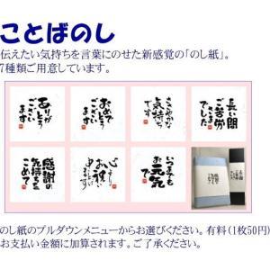 八海山 日本酒 ギフト 吟醸 特別本醸造 720ml 詰合せ|wakamatsuya|02