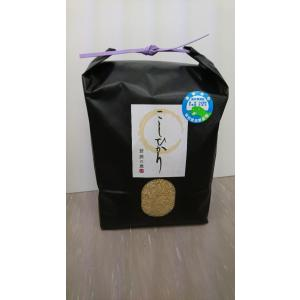 玄米3kg H29年福井県産  特別栽培米認証1 こしひかり 若狭の恵|wakasa-megumi