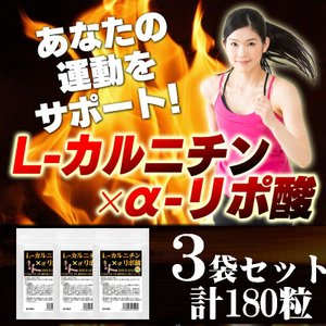 L-カルニチン コエンザイムQ10配合 3袋セット 合計180粒  メール便送料160円