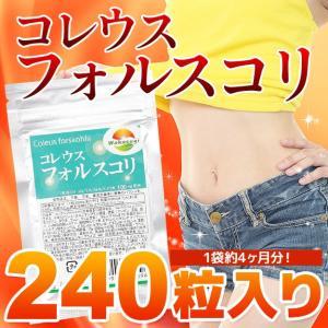 コレウスフォルスコリ 240粒 最大4か月分 1袋に24000mg  メール便発送|wakasugi2012