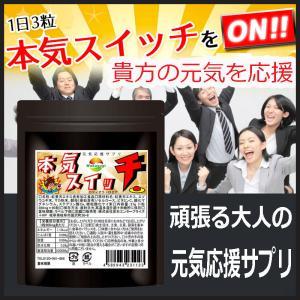 ロディオラ・ロゼア サプリ 紅景天エキス含有食品 本気スイッチ 90粒約1か月分 エゾウコギ マカ配合|wakasugi2012
