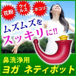 ヨガ ネティポット 鼻洗浄専用ポット 鼻洗浄器 注目商品|wakasugi2012