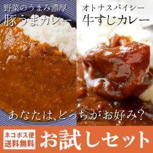 牛すじカレー&豚うまカレー お試しセット 2種  カレー 博...