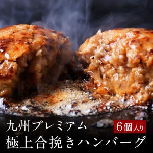 父の日ギフト 極上ハンバーグ (5個入りセット) ハンバーグ お取り寄せ ギフト 冷凍 贈り物 お祝 高級 グルメ 博多 九州 プレゼント 送料無料 ポイント消化|wakasugi