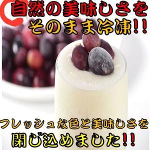 【IQF冷凍カットフルーツ】 グレープ ぶどう 500g 12袋入り 冷凍 食品 フルーツ 新鮮 使...