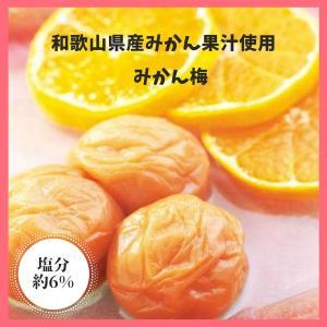 紀州南高梅 みかん果汁入り梅干 みかん梅|wakayamatokusanhin