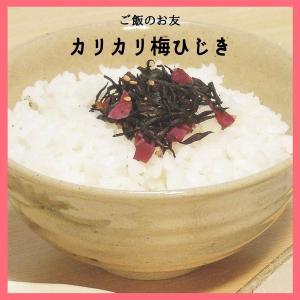 ご飯のお友 梅ひじき 80g|wakayamatokusanhin