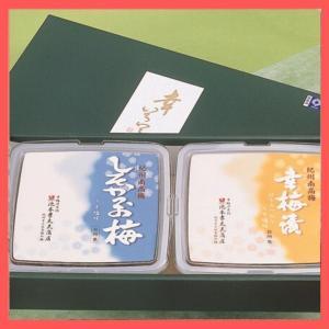 紀州南高梅はちみつ梅としそかつお梅の梅干セット 幸いろいろ 350g×2|wakayamatokusanhin