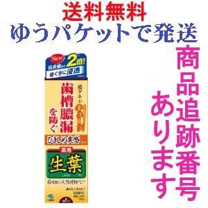 小林製薬 ひきしめ生葉 100g ひきしめ実感タイプ 医薬部...