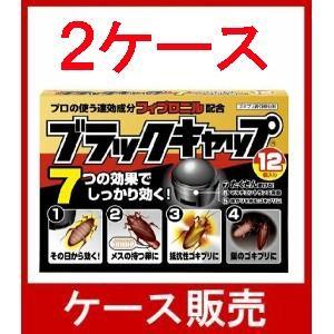 (ケース販売) 「アース ブラックキャップ ...の関連商品10