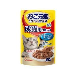 ねこ元気パウチ 成猫用まぐろ 60gの関連商品1